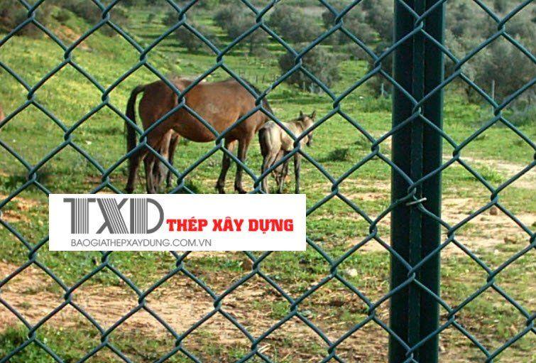 lưới b40 làm hàng rào sở thú